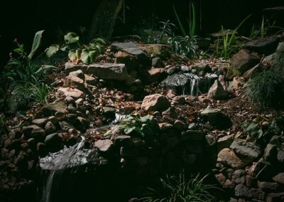 Southern Greenscapes Landscape Design & Construction   Rock Hill, SC   lighting in water feature