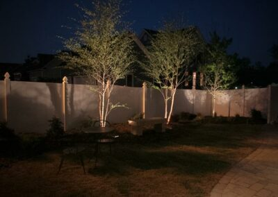 Southern Greenscapes Landscape Design & Construction   Rock Hill, SC   outdoor lighting focusing on trees