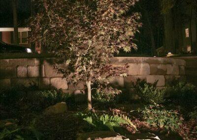 Southern Greenscapes Landscape Design & Construction   Rock Hill, SC   landscape lighting for trees